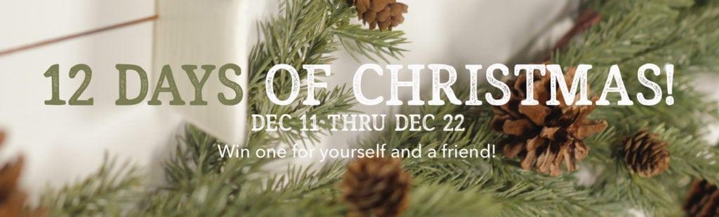 Zibra's 12 Days of Christmas